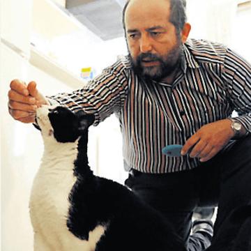 Jim Stephens - Pet Behaviour Consultant